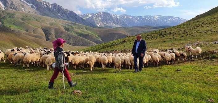 Karaman, Yaylalarda geçimlerini besicilik yaparak sağlayan göçerleri ziyaret etti