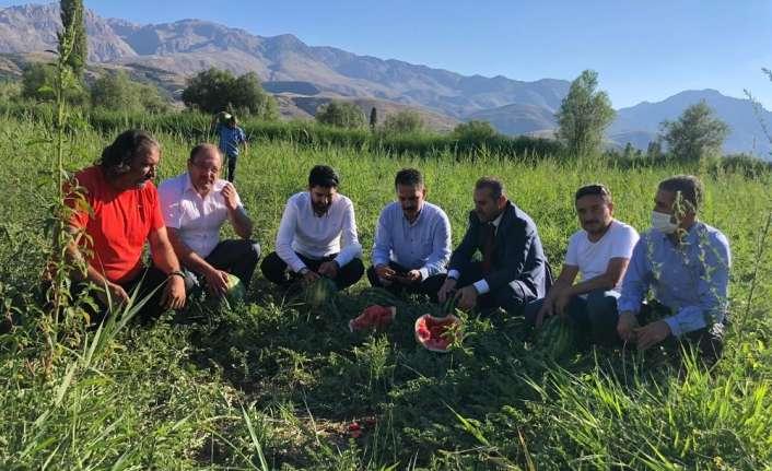 Erzincan'da karpuz hasadı başladı