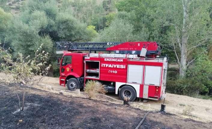 Ağaçlık alanda yangın
