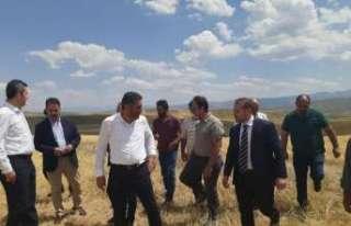 Milletvekili Çakır, Çayırlı'da ekinleri zarar...