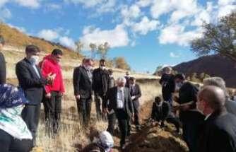 Erzincan'da Bal Ormanı kuruldu